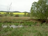 Alluvial contaminated soils